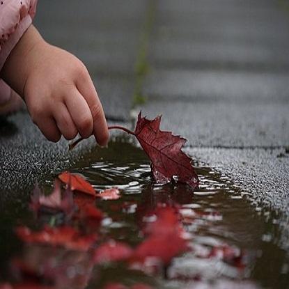 autumn-2917472__340